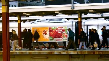 Jenkins Arboretum & Gardens Train Platform Poster - Spring Bloom Festival